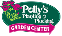 Pollys Planting Plucking Michigan Gardening