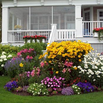 Spring Summer Gardens Pollys Planting Plucking