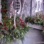 Festive outdoor Xmas decorations