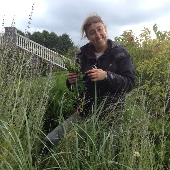 Pollys Planting & Plucking Fine Gardening Services