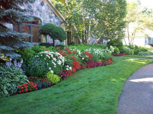 Perennial garden in full bloom
