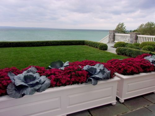 Fall planters with mums and ornamental cabbage