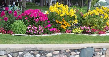 Colorful sun garden
